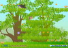 Game Khỉ con hái cam