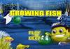 Game Cá lớn nuốt cá bé 13