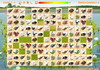 Game Tìm hình giống nhau 97