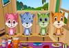 Game Chăm sóc thú cưng 24